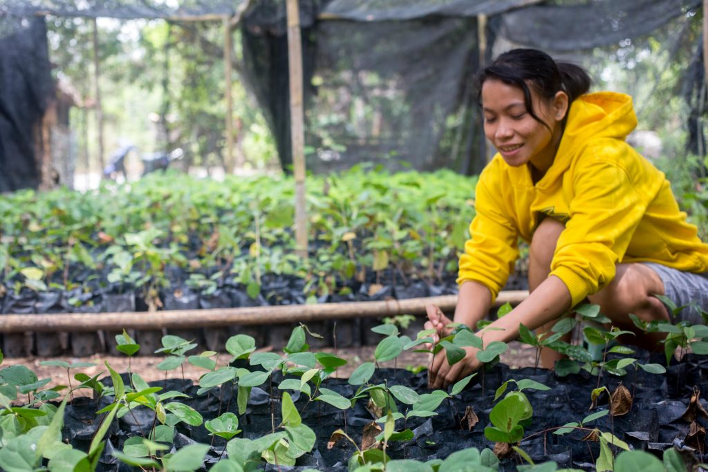 Woman in the Seedling Nursery