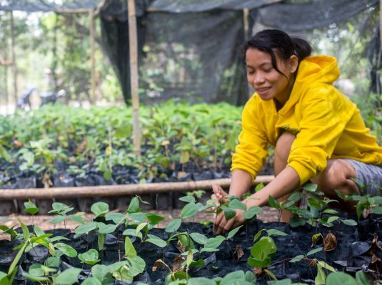 Girl plants seedling as a part of ASRI's reforestation program in Indonesia.