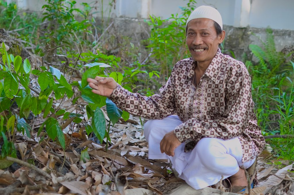 Pak Didin and seedlings