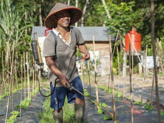 ASRI Organic Gardening
